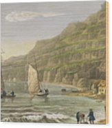 Shanklin Bay Wood Print