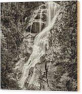 Shannon Falls - Bw Wood Print