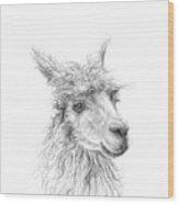 Shannon Wood Print