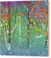 Sharing Colours And Dreams Wood Print