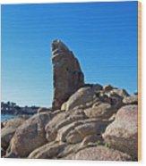 Shark Finn Rock Wood Print