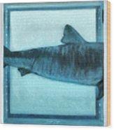 Shark In Magic Cubes - 2 Of 3 Wood Print