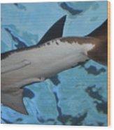 Shark Tail Wood Print