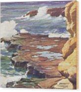 Sharp Rocky Coastline Wood Print
