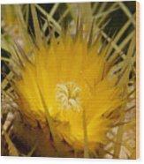 Sharp Yellow Wood Print