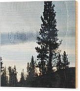 Shasta Trinity National Forest Sunrise Portrait Wood Print