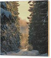 Shawnigan Winter Road Wood Print