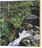Shays Run Blackwater Falls State Park Wood Print