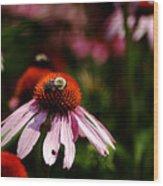She Loves Bee She Loves Bee Not Wood Print