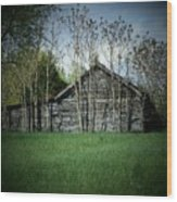 Shed And Trees Wood Print by Michael L Kimble