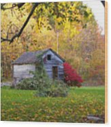 Shed In Autumn Wood Print