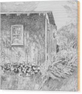 Shed In My Mothers Back Yard Wood Print