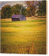Shed In Sunlight Wood Print