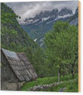 Shed In The Pass Wood Print