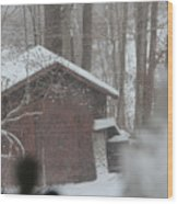 Shed Thru Glass And Snow Wood Print