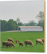 Sheep And Covered Bridge Wood Print