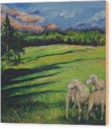 Sheep At Dusk Wood Print