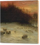 Sheep In A Winter Landscape Evening Wood Print