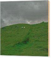Sheep.  Wood Print