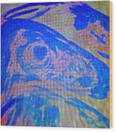 I Can Show You The Sheep World  Wood Print