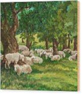 Sheep Pasture Ithaca New York Wood Print by Ethel Vrana
