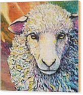 Sheepish Wood Print