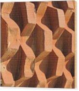 Sheeps Foot Wood Print