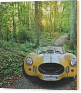 Shelby Ac Cobra In The Woods Wood Print