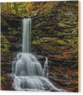 Sheldon Reynolds Falls Wood Print