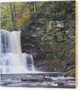 Sheldon Reynolds Falls Wood Print