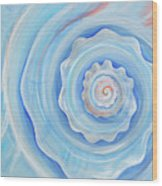 Shell Coral Blue Wood Print