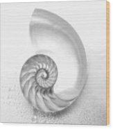 Shell Inside - Bw Wood Print