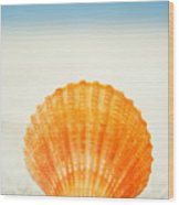 Shell On Beach Wood Print
