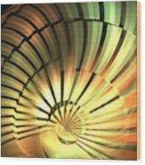 Shell Star Wood Print