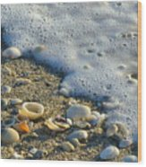 Shells And Seafoam Wood Print