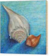 Shells In Blue Wood Print