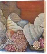 Shells On Shelf Wood Print