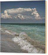 Shells, Surf And Summer Sky Wood Print