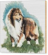 Sheltie Watch Wood Print by Kathleen Sepulveda