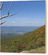 Shenandoah  Wood Print