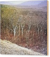 Shenandoah Wilderness Wood Print