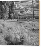 Shepard Lake Wood Print