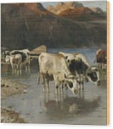 Shepherd With Cows On The Lake Shore Wood Print