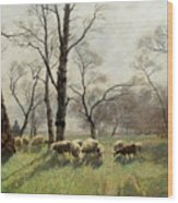 Shepherd With His Flock In The Evening Light Wood Print