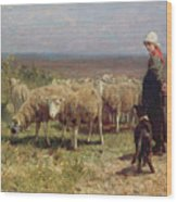 Shepherdess Wood Print by Anton Mauve