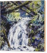Shepherds Dell Falls Coumbia Gorge Or Wood Print