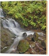Shepperd's Dell Falls Wood Print