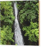 Shepperd's Dell Falls, Oregon Wood Print