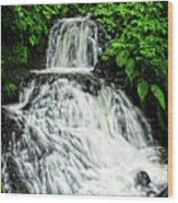 Shepperd's Dell In Rain Wood Print