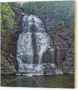 Shequaga Falls Wood Print